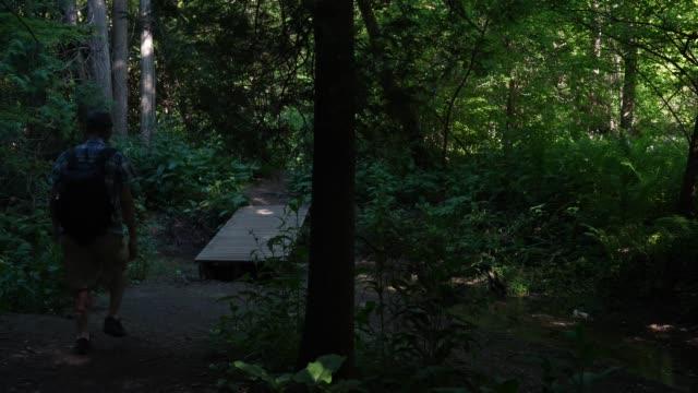 男のハイキングや森林地域を探索 - 外乗点の映像素材/bロール