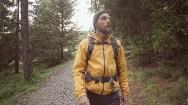 Man van de wandel- en bosgebied verkennen