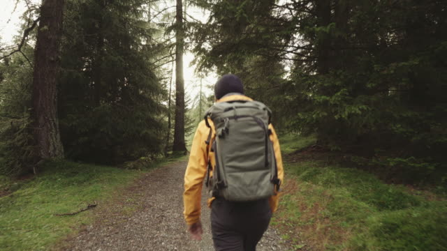 man hiking and exploring forest area - cappello video stock e b–roll