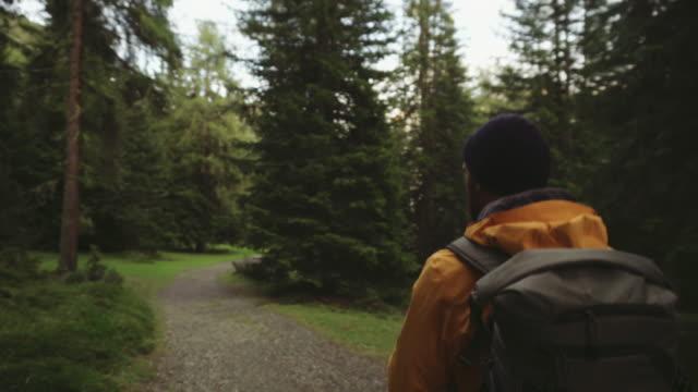 男はハイキングや森林エリアを探索 - 外乗点の映像素材/bロール