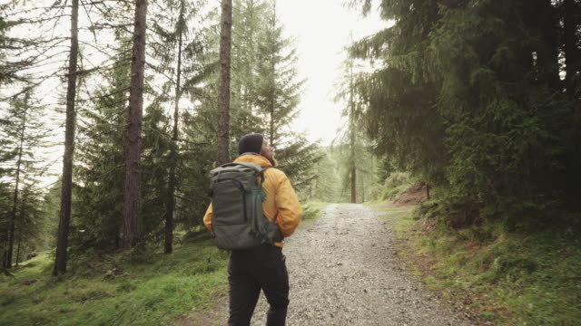 man hiking and exploring forest area - zaino da montagna video stock e b–roll