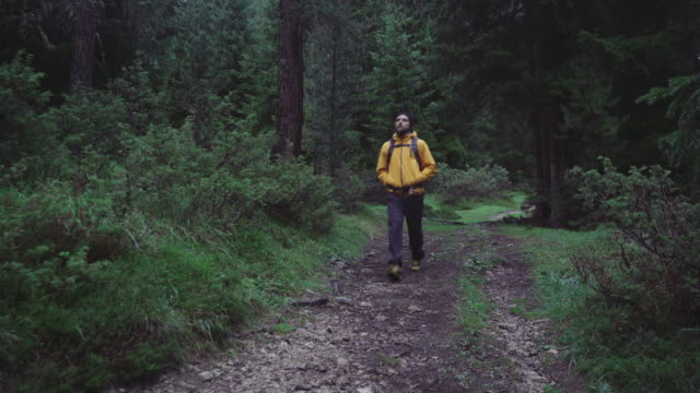 man hiking and exploring forest area - warm clothing stock videos and b-roll footage