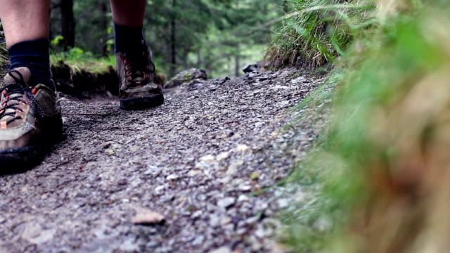 Man wandelen in Tatra bergen