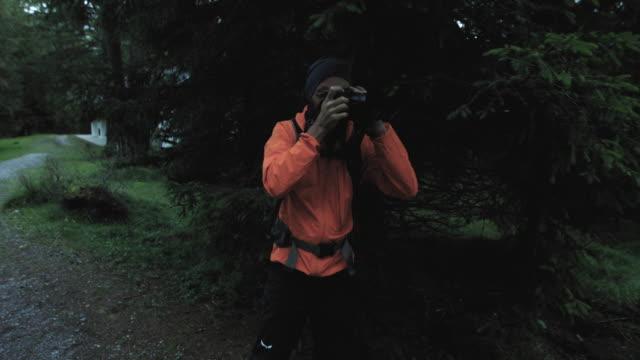 ドロミテの森でハイキングする男, イタリア, 野生動物を探して - 公園保安官点の映像素材/bロール