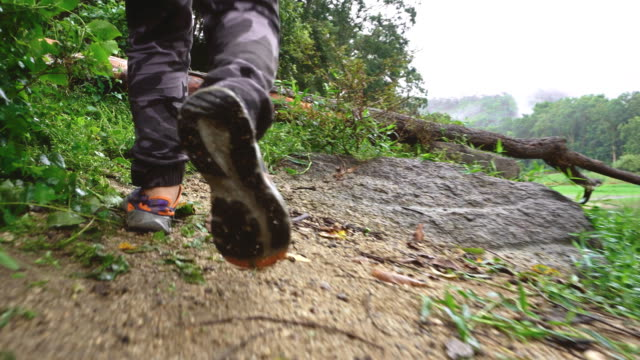 man hiking on a forest trail. - low section stock videos & royalty-free footage