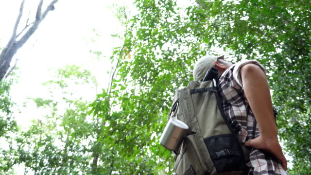 man hiking on a forest trail - walking point of view stock videos & royalty-free footage