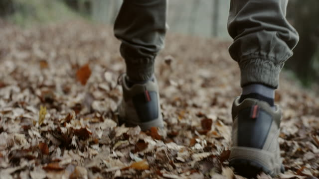 man hiking on a forest trail - stivale video stock e b–roll