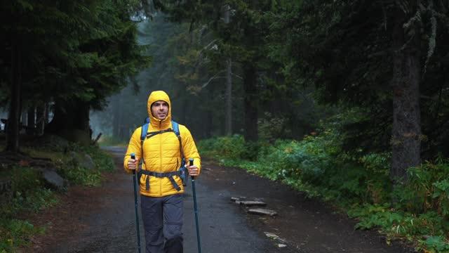 uomo che escursioni da solo tra la natura - casacca video stock e b–roll