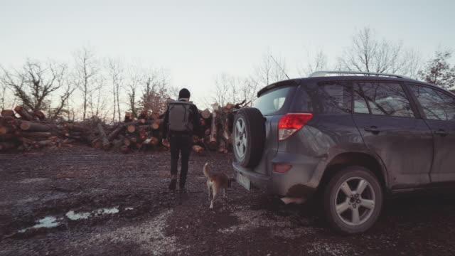 menschen wandern mit hund in einem waldgebiet bei sonnenuntergang - holzfäller stock-videos und b-roll-filmmaterial