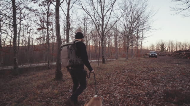 Man hiking with dog in a forest area at sunset