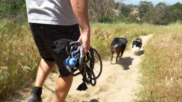 vídeos y material grabado en eventos de stock de a man hiking with his dogs on a trail. - slow motion - grupo pequeño de animales