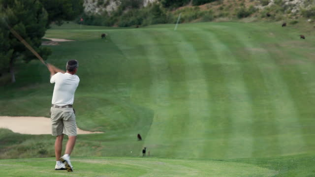 ws man hitting golf ball on golf course / palma de mallorca, mallorca, baleares, spain - golf stock-videos und b-roll-filmmaterial