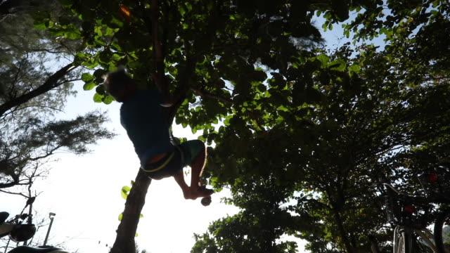 man hoists himself onto rope swing, dangling from tree - rope swing stock videos & royalty-free footage