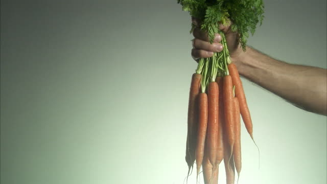 man holding a bunch of carrots. - bunches stock videos & royalty-free footage