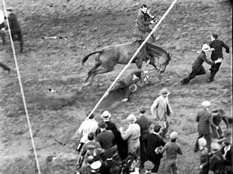 man holding onto reins of horse following horse racing win, man being dragged by horse from winner's circle onto racetrack; man frees himself, falls... - 馬勒点の映像素材/bロール