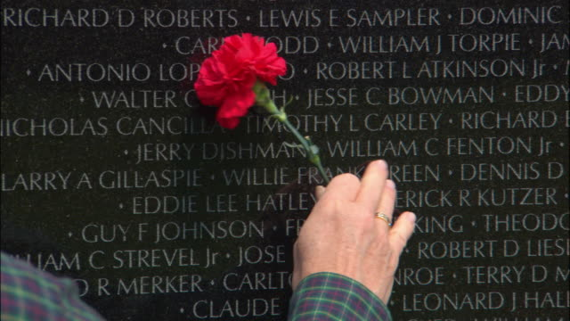 cu, pan man holding red carnation pointing at names of soldiers inscribed on wall, vietnam veterans memorial, washington dc, usa - vietnam veterans memorial video stock e b–roll