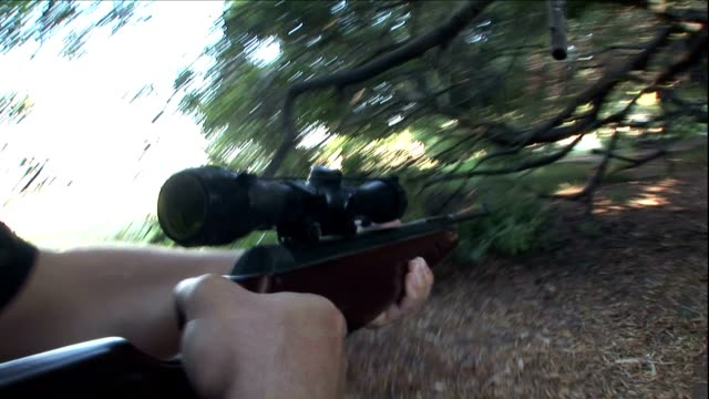 a man holds a rifle as he searches for someone in a forest. - armed police forces stock videos & royalty-free footage