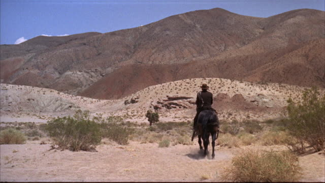 ms man horse rinding at desert - cowboy stock-videos und b-roll-filmmaterial