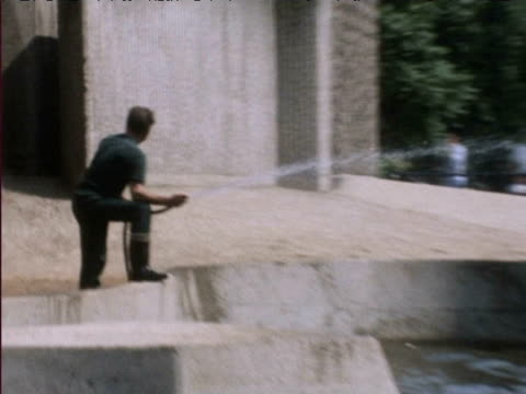 man hoses elephant at london zoo during heatwave 1976 - 1976 stock videos and b-roll footage