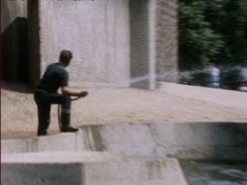 man hoses elephant at london zoo during heatwave 1976 - 1976 bildbanksvideor och videomaterial från bakom kulisserna