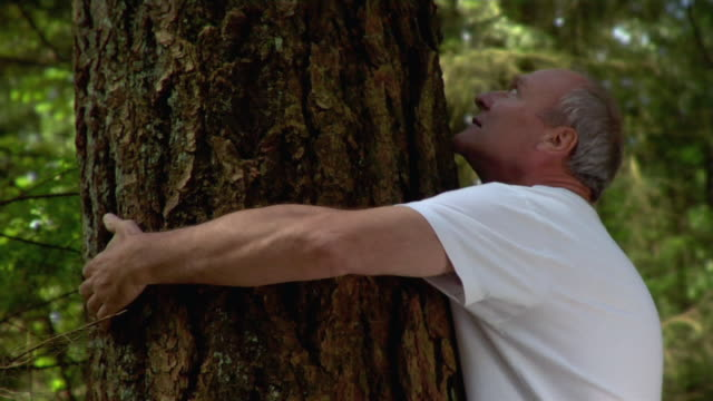 man hugging tree / looking at camera and smiling / closing eyes - umarmen stock-videos und b-roll-filmmaterial