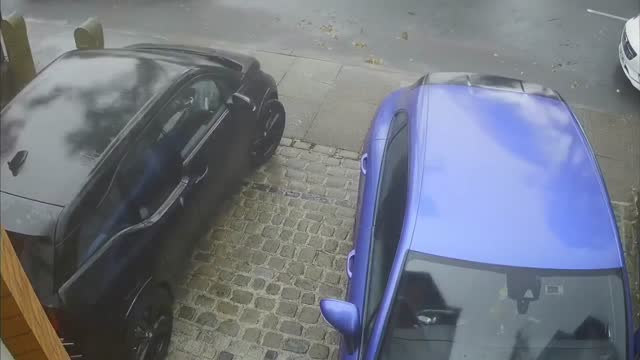 man in altrincham had a lucky escape on july 19, when strong winds, from what the met office https://twitter.com/metoffice/status/1152293955725398018... - royal horticultural society stock videos & royalty-free footage