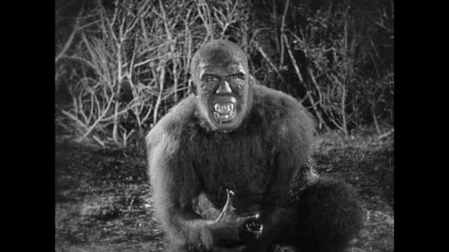 1925 Man in ape suit is shot by explorers after trying to attack climbing man in tree