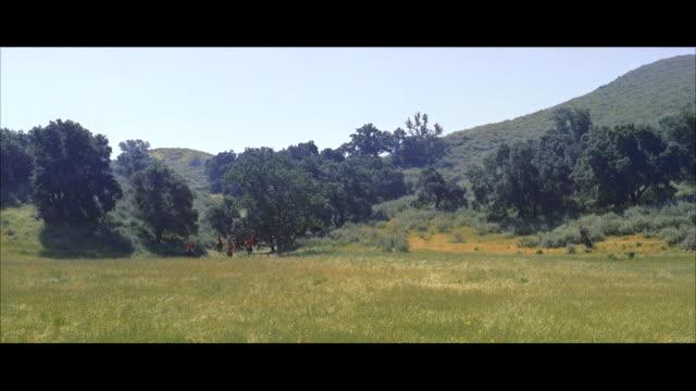 ws man in black riding habit riding side saddle on wild white horse across grass  - arbetsdjur bildbanksvideor och videomaterial från bakom kulisserna