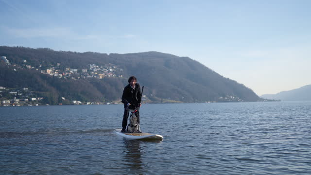 man in business suit on sup paddling with dog - full suit stock videos & royalty-free footage