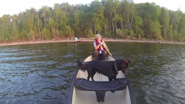 stockvideo's en b-roll-footage met man in canoe with his dog at sunset - wildernis