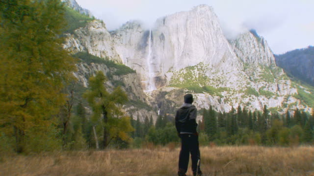 man in forest in yosemite national park / california, usa - yosemite stock videos and b-roll footage