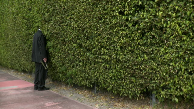 vidéos et rushes de ws man in full suit standing with head in hedge, holding clippers, south beach, florida, usa - visage caché