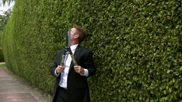 ms man in full suit trimming hedge, south beach, florida, usa - full suit stock videos and b-roll footage