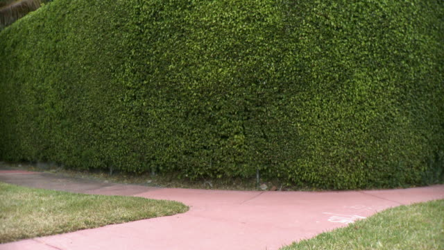 ws man in full suit walking in front of hedge, carrying clippers, south beach, florida, usa - full suit stock videos and b-roll footage