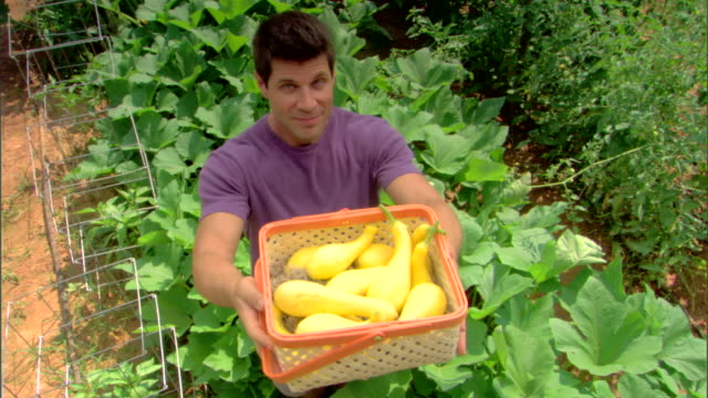 man in garden with basket of squash - see other clips from this shoot 1425 stock videos and b-roll footage
