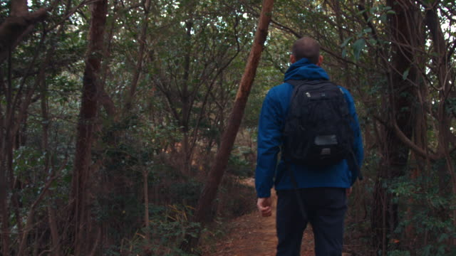 a man in his 30's hiking - rucksack stock-videos und b-roll-filmmaterial