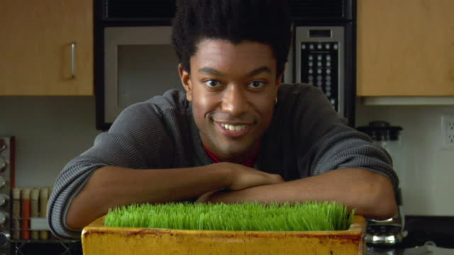 CU PORTRAIT Man in kitchen leaning over tray of wheatgrass/ New York City