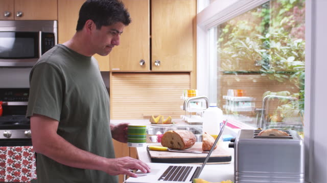 vidéos et rushes de ms man in kitchen, standing, holding and drinking coffee while using laptop / portland, oregon, united states - être debout