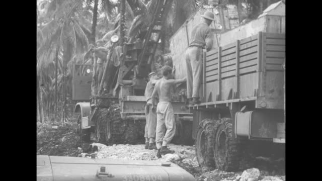 vs man in pith helmet moves a heavy wooden plank worker framed by palm tree fronds maneuvers a heavy wooden beam large crates are removed from truck... - blattfiedern stock-videos und b-roll-filmmaterial