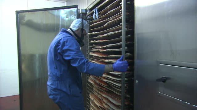 a man in protective clothing pulls a rack of salmon from a smoker. - nahrungsmittelfabrik stock-videos und b-roll-filmmaterial