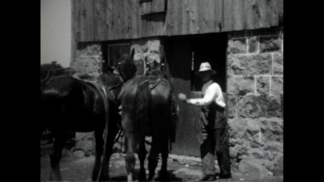 man in rancher outfit fixing saddle on a horse two horses standing next to a building fence in the background - saddle stock videos & royalty-free footage