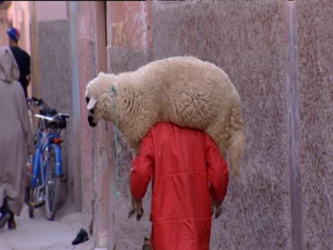 Man in red coat carrying sheep across shoulders Marrakesh