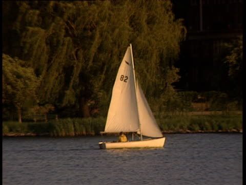 man in small sailboat sails along river with trees riverbank and traffic in background - menschlicher arm stock-videos und b-roll-filmmaterial