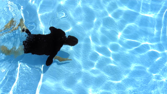 hd: man in suit jacket swimming - suit jacket stock videos & royalty-free footage