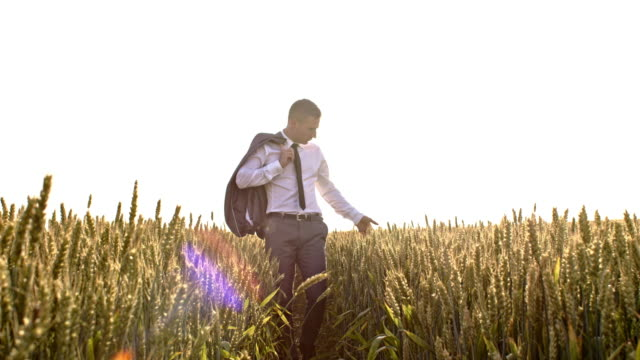 WS Man in suit walking through field of wheat