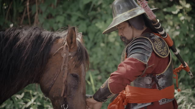 man in traditional army suit take care his horse - warrior person stock videos & royalty-free footage