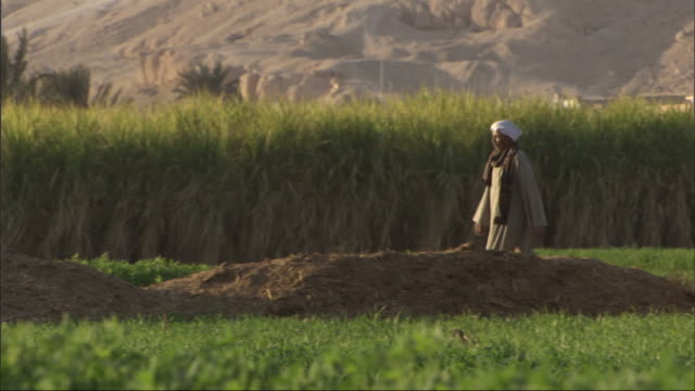 a man in traditional clothing walks into a field. - middle east stock videos & royalty-free footage