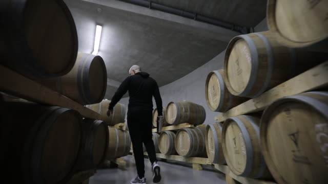 man in wine cellar full of wine casks - winemaking stock videos & royalty-free footage
