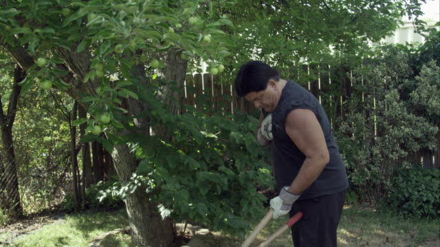 Man in yard trimming a tree pausing for chest pain.