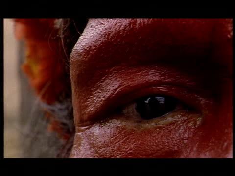 a man indigenous to the brazilian rainforest blinks his eye. - 瞬き点の映像素材/bロール